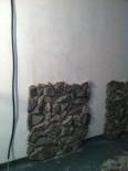 Placari piatra decorativa