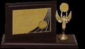 Trofee sportive Mures