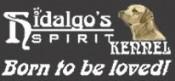 Hildago' s Spirit