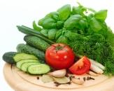 Productie legume solar