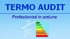 Termo Audit