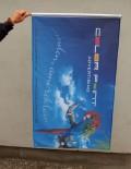 Steaguri promotionale
