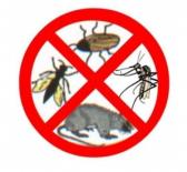 Servicii dezinfectie