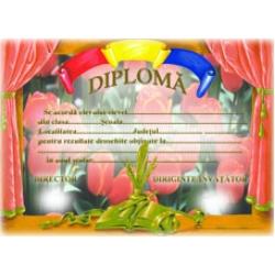 Diplome invatamant primar