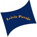 C&A Leivis Pavaje