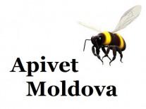 Apivet Moldova