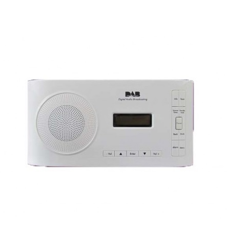 Aparate radio portabile