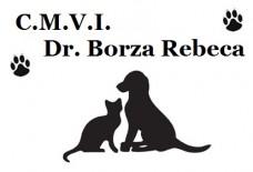 Medic veterinar Constanta