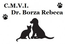 C.M.V.I. Dr. Borza Rebeca