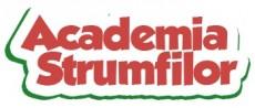 Academia Strumfilor