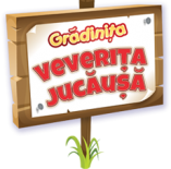Veverita Jucausa