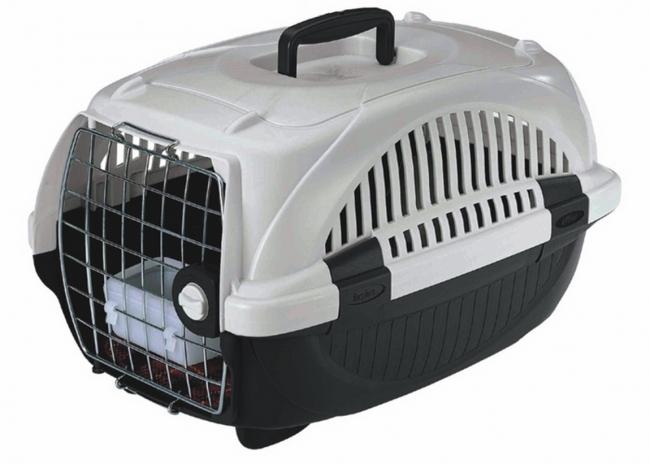 Custi transport pisici