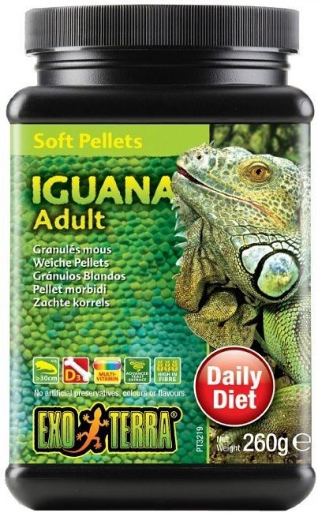 Hrana reptile