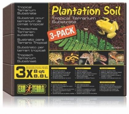 ASTERNUT PLANTATION SOIL