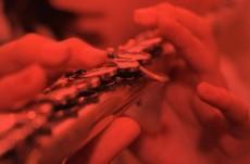 Lectii de flaut