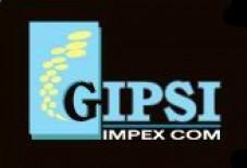 Gipsi Impex Com