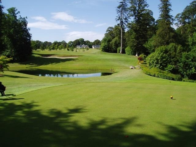 Gazon teren golf