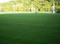 Gazon terenuri de fotbal