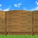 Garduri case