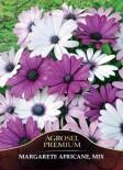 Seminte profesionale de flori