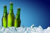 Distributie bere