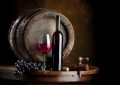 Distributie vinuri