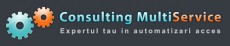 Consulting Multiservice
