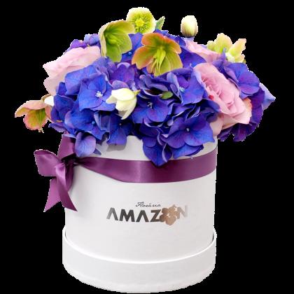 Cutie Amazon purple