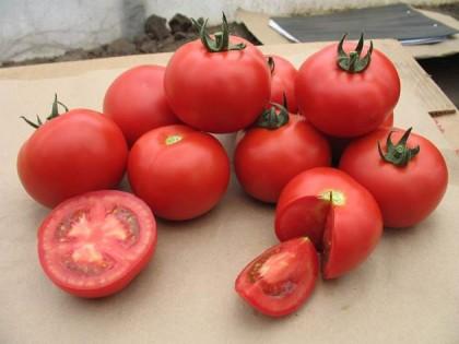 Seminte tomate Valday