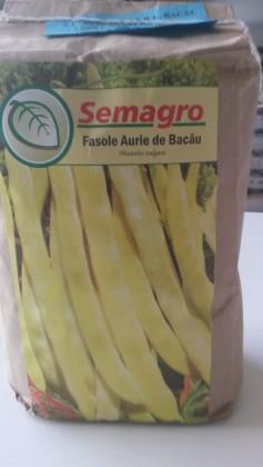 Seminte fasole aurie de Bacau Semagro