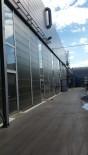 Constructii hale industriale Timisoara