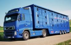 Semiremorci transport animale