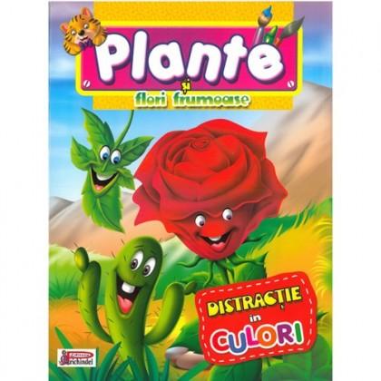 Plante și flori frumoase