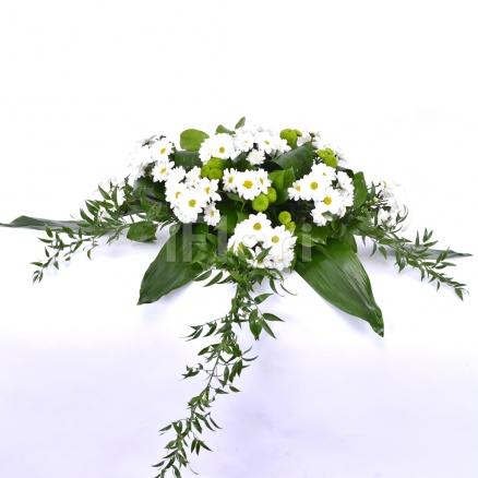 Prezidiu crizanteme albe