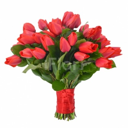 Buchet lalele rosii 39 fire