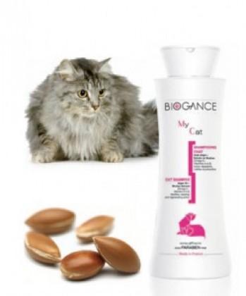 Sampon pisici