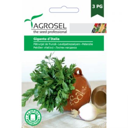 Seminte legume hobby