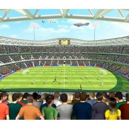 Fototapet Stadionul de Fotbal (Football Crazy)