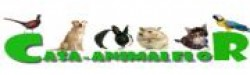 Www.casa-animalelor.ro