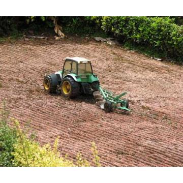 Lucrari agricole - cultura mare