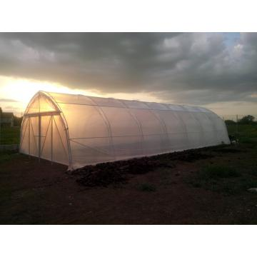 Solarii agricole Profi 6 - 6x20m