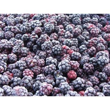 Mure Rubus fructicosus