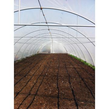 Solarii pentru legume si flori - ventilatie laterala