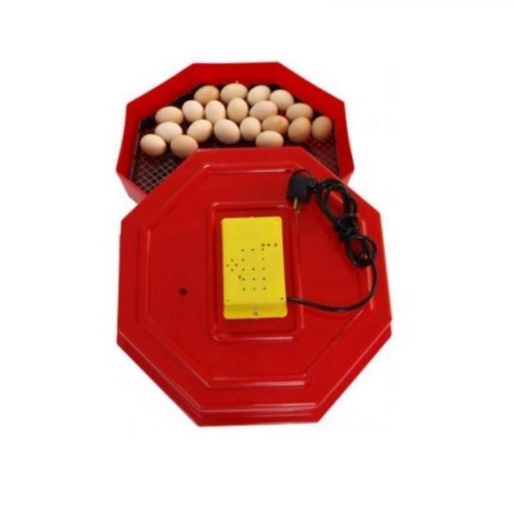 Incubator pentru oua, Cleo 5, capacitate 60 oua