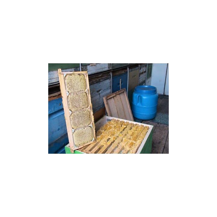 Rame pentru miere in sectiune