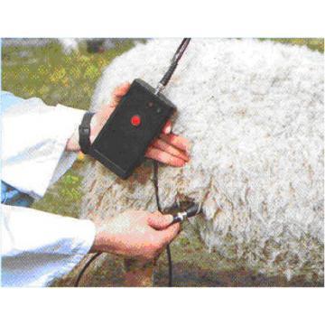 Detector de sarcina cu ultrasunete pentru oi si capre - PDs