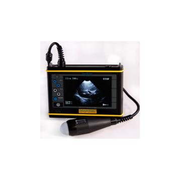 Ecograf cu sonda abdominala pentru caini Dogscan - DS.A