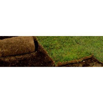 Substrat pentru gazon rulou