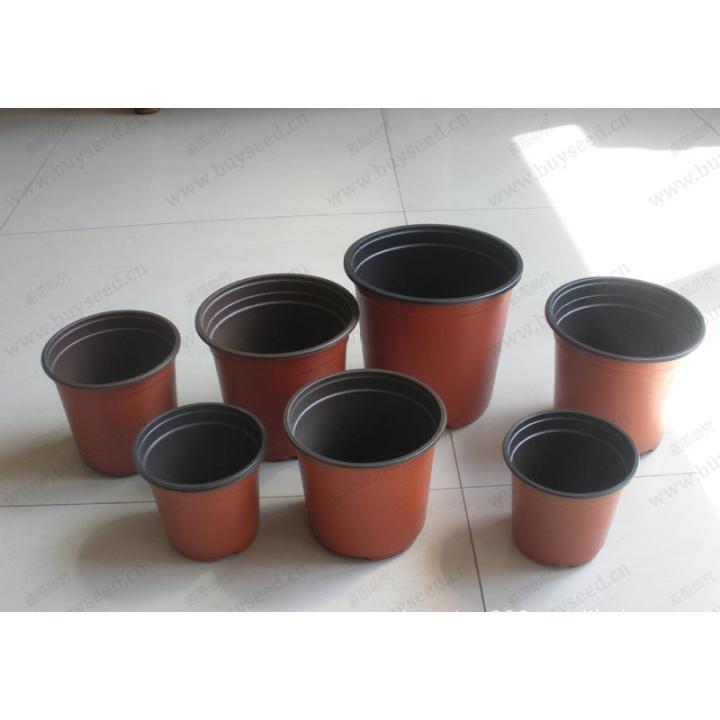 Ghivece pentru rasaduri de flori si legume