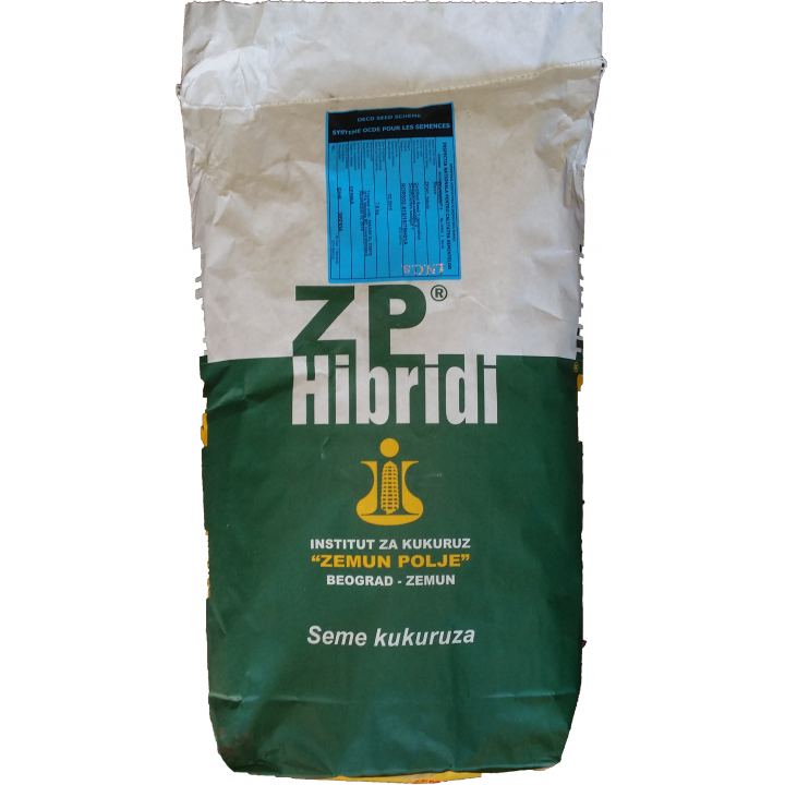 Seminte porumb ZP 341, FAO300